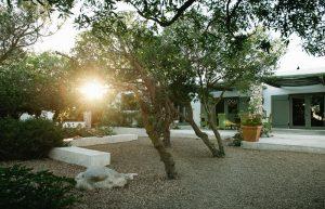 garden in gelukkie